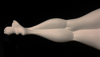 leg(800x458).jpg